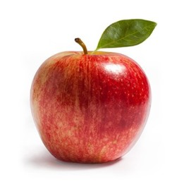 Apple-ForWeb