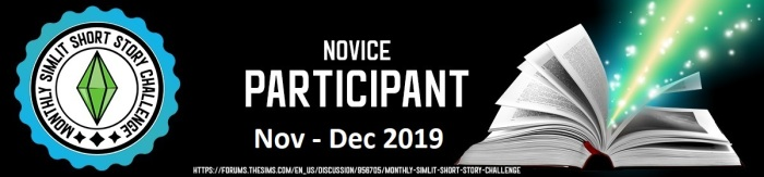 Novice Participant nov dec 19